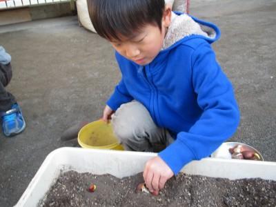 植えるIMG_6760