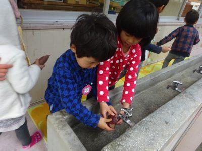 DSC08120芋洗う