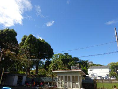 DSC07805台風後青空